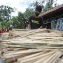 tanaman-bambu